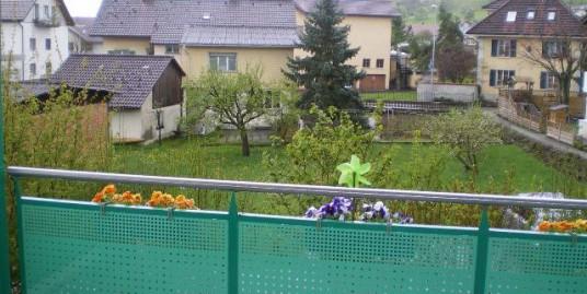 5637 Beinwil, An sehr sonniger, ruhiger Wohnlage