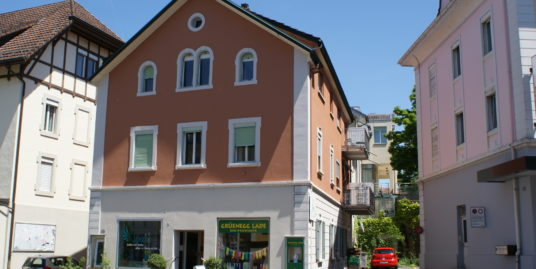 """Charmantes """"Liebhaberobjekt"""" im Zentrum von Hochdorf"""